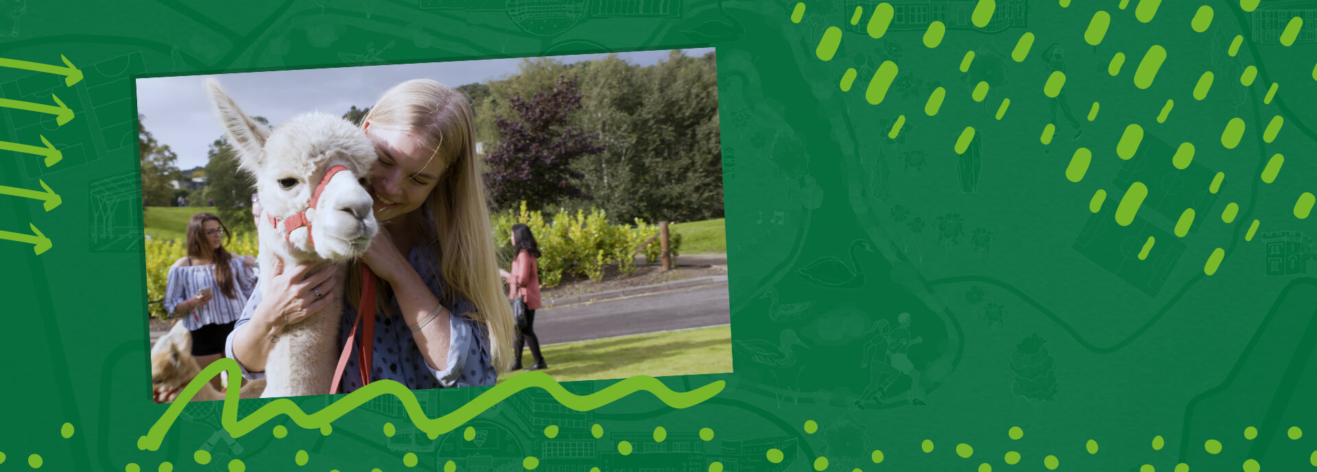 An image of a female student with an alpaca on a graphic, green background