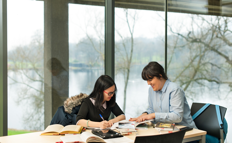 two students studying in library