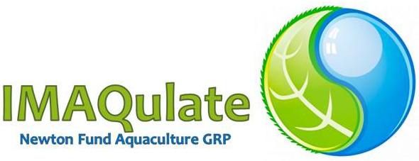 020ec56e69e IMAQulate logo