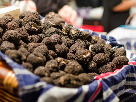 Climate change predicted to end truffle production