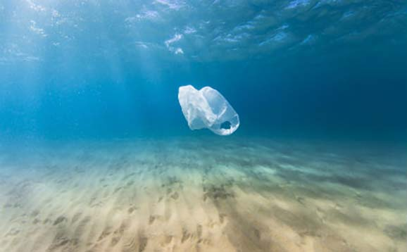 Plastic bag in the ocean