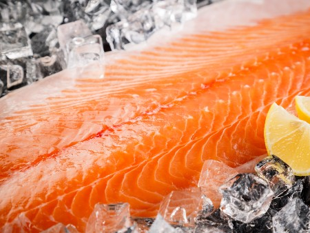 New study on the impact of innovative feeds on salmon health