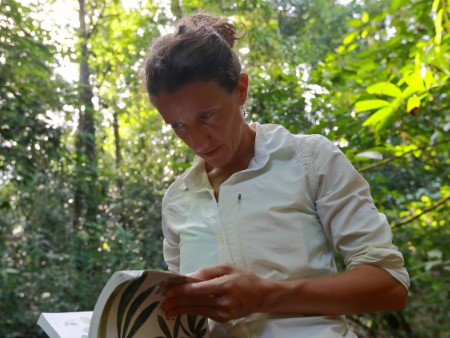 Stirling academic offers glimpse into the future of tropical forests