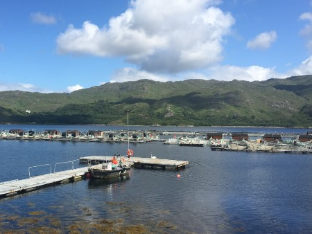 Aquaculture sustainability can be improved through collaboration with agriculture, experts say