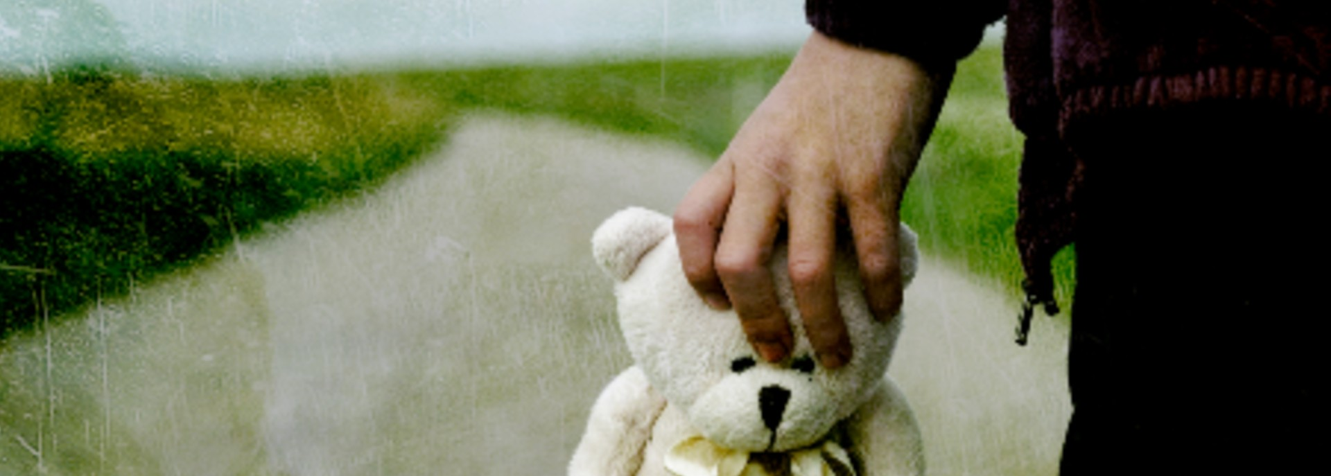 Child's hand holding a white teddy bear