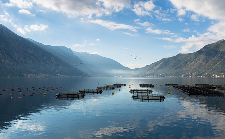 Fish farm in loch