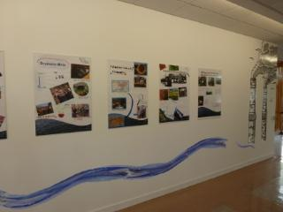 Image of Exhibition1