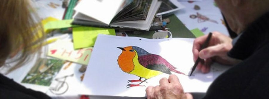 Header drawing a robin